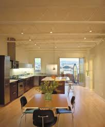 light wood floors with cabinets dining room modern with metal