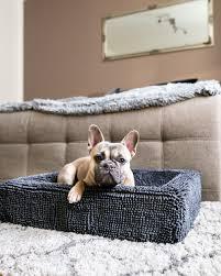 hundeschlafplätze hundematten hundebetten lounges