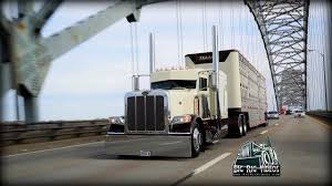 100 Miller Trucking Phil Livestock Rolling CB Interview