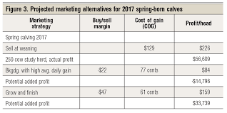 2017 spring born calves Production marketing options for