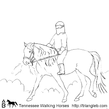 Sometimes In The Winter We Ride Our Tennessee Walking Horses Bareback With Just A Halter Dont Very Long But It Is Fun