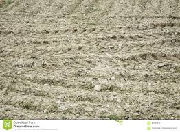 100 Truck Brands Stone Truck Brands Stock Image Image Of Footprint Ground 67327971