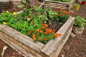 Raised Bed Soil Calculator by What You Need For The Best Soil Mix For Raised Beds Sumo Gardener