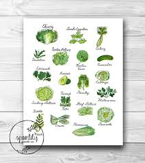 Kitchen Art Print Wall Decor Vintage Printable Herbs Vegetables Illustration