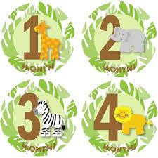 Rezept Kindergeburtstagstorte Mit Dschungel Und Affe Elefant Löwe