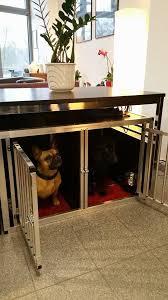 hundeboxen stubenboxen faustmann hundeboxen