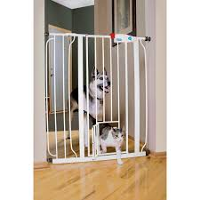 Pet Stairs For Tall Beds by Carlson Pet Products Extra Tall Expandable Gate With Small Pet
