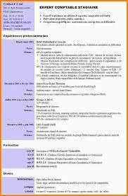 exemple cv assistant de gestion gv33 jornalagora