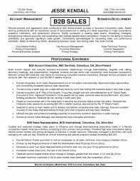 ResumeRepresentative Resume Sample Beautiful Technology Examples Example Resumes Objective Statement Sales Assistant Manager Executive
