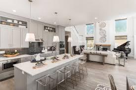 100 Home Dision Model Design Case Study Lita Dirks Co Interior Design Firm