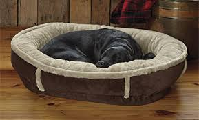 Serta Dog Beds by Memory Foam Dog Beds U0026 Orthopedic Dog Beds Orvis
