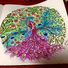 Secret Garden Coloring Book Adult Books Colouring Gardens Peacocks Johanna Basford Colour Watercolors