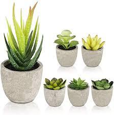 gobesty künstliche sukkulenten pflanzen 6 stücke kunstpflanze mit töpfen mini kunststoff fälschung grünes pflanzen deko für büro tische balkon