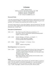 Profile For Resume How To Write Simple Examples Personal Template Maker Word Professional