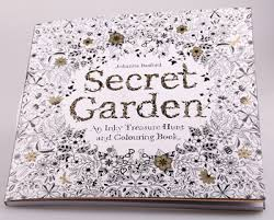 Secret Garden 96 Pages English Edition Coloring Book For Children Adult Relieve Stress Kill Time Gra