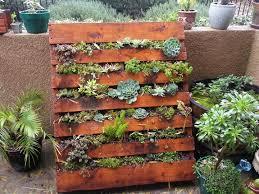 Our Succulent Pallet Garden