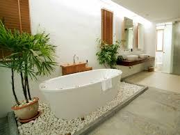 pflanzen für das badezimmer radio wien