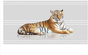 grazdesign sichtschutzfolie fenster tiger klebefolie fenster wohnzimmer glasfolie flur fensterfolie großkatze 90x57cm