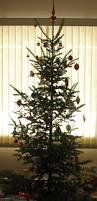 Tannenbaum Christmas Tree Farm Michigan by Minnesota U2013 26 3 U0026 Beyond