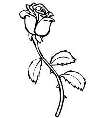 Coloring Pages Roses Free Printable For Kids Images