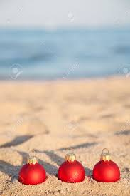 Driftwood Christmas Trees Nz by Christmas Tree Beach Images U0026 Stock Pictures Royalty Free