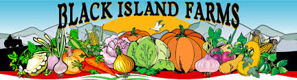 Apple Pumpkin Picking Syracuse Ny by Find Pick Your Own Pumpkin Patches In Utah Corn Mazes And