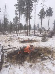 Colorado Blm Christmas Tree Permits by Southplatterd Hashtag On Twitter