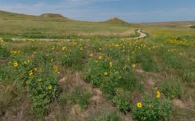Agate Fossil Beds by Agate Fossil Beds Nebraska 360 Degree Vr Panoramas