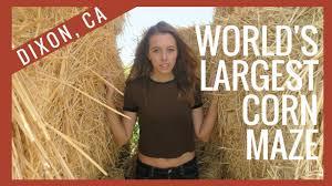 Pumpkin Patch Dixon Ca by World U0027s Largest Corn Maze Dixon Ca Youtube