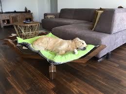 schöner wohnen mit hund die doxx lounge lässt sich