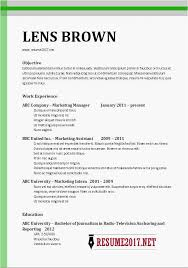 Chronological Resume Template New Format