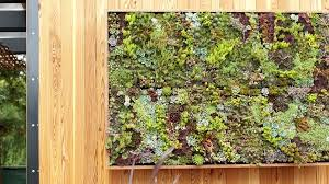 Make Your Own Living Succulent Art Sunset Magazine Wall Garden A Little More O