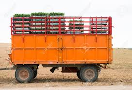Tractor Trailer Loaded With Seedlings. Crates Seedlings Stock ... Self Driving Semitruck Makes The First Ever Autonomous Beer Run Foreign And Domestic Bit Like Usuk Team In Wapu 16 Vector Icon Set Bio Sun Stock 730901725 Shutterstock Viagrow 205 X 85 Seed Propagating Seedling Heat Mat Planting Tomatoes Across Road Meridian Jacobs Blog Allan House Shanti Rob Outdoor Courtyard Twinkle Lights Urban Gardening Crazy Summer Weather Sweet Si Bon Sfpropelled Seedling Transport Machine Sc650 Sc650 Petros Windmill 737753128 Trays Zimbabwe Absurdity Flybasket Ride Today Plant Tomorrow Farmlog Rice Seedlings Collaboration With Gardens Of Eagan Tiny Diner