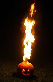 Totoro Pumpkin Carving Ideas by 127 Best Halloween Jack O Lantern Ideas Images On Pinterest
