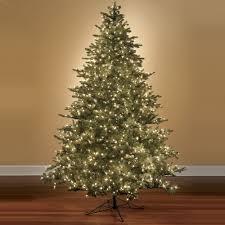 12 Ft Christmas Tree by The World U0027s Best Prelit Noble Fir 12 Foot Full Hammacher Schlemmer