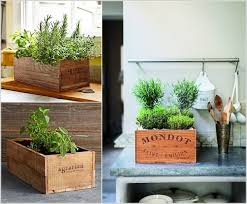 Wooden Crates Herb Garden