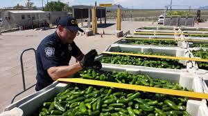 Oit Help Desk Cu Denver by U S Customs And Border Protection Securing America U0027s Borders