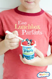 How To Pack Yogurt In A Lunch Box And Parfait Recipe
