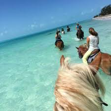 Family Friendly And Easy To Get Once You Arrive With Your At The Caribbean Island Of Turks Caicos Youll Not Want Leave