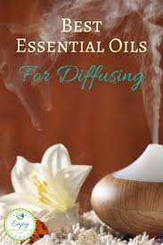 Citronella Lamp Oil Tesco by The 25 Best Best Diffuser Ideas On Pinterest