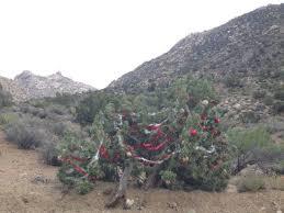 Christmas Tree Pass Crazy Decorations