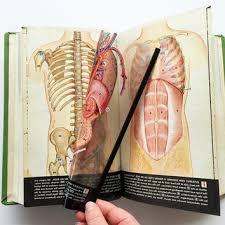 Vintage Anatomy Book Full Best Textbook