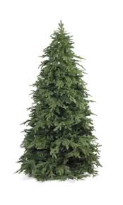 Realistic Artificial Christmas Trees Nz by Home The World U0027s Most Realistic Christmas Tree Everlands Trees