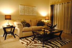 Apartment Living Room Decorating Ideas A Bud Exemplary