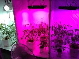 bdl lab hydroponic grow system black led