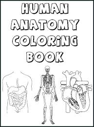 The Anatomy Coloring Book Pdf And Pages Anatomical 2 Human