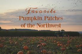Pumpkin Patch Seattle Washington by Favorite Pumpkin Patches Of The Northwest U2013 Northwest Healthy Mama