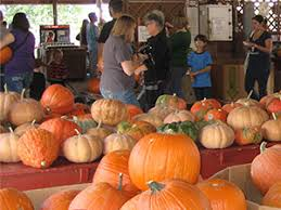 Pumpkin Patches In Okc by Grown Vegetables And Fruit At Livesay Orchards Farm Market Porter
