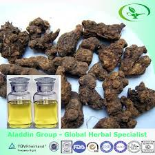cyperus rotundus extract oil cyperus rotundus extract oil