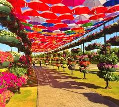 Umbrella Passage Structure At The Dubai Miracle Garden